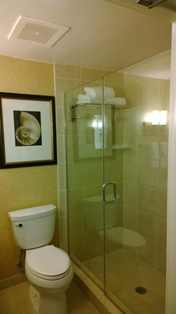Hilton Garden Inn Palm Coast : Bathroom