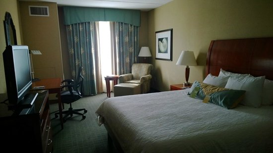 Hilton Garden Inn Palm Coast : King Room