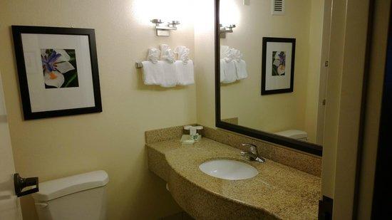 Hilton Garden Inn Orlando Airport : Bothroom