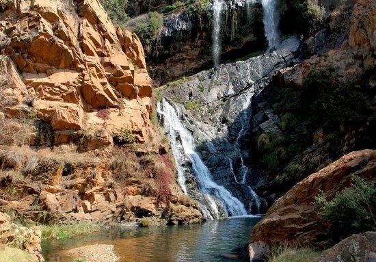 Walter Sisulu National Botanical Gardens: waterfall