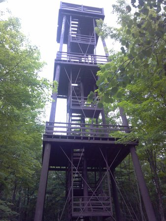 Fire Tower Some Missing Steps Picture Of Potawatomi