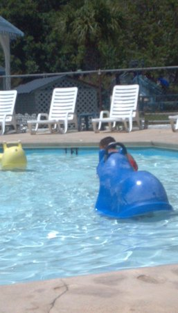 Affordable Family Resort: Kiddie Pool: 2 water rockers