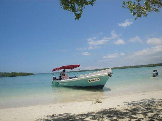 Galapagos Beach at Tortuga Bay: Vista de la playa Tortuga bay