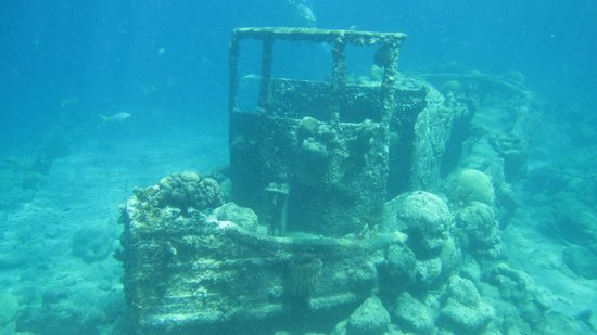 Adrenaline Tours Curacao: A snorkeling stop at the Tugboat
