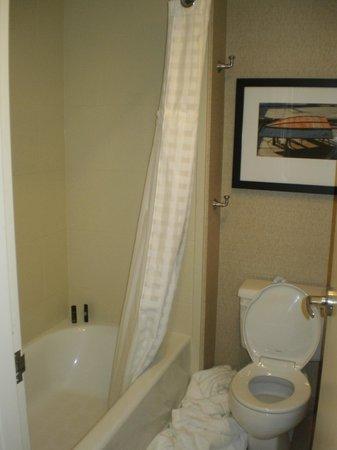 Embassy Suites by Hilton Portland Maine : Small bathroom