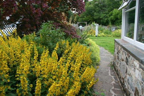 The Courthouse (Henllys): Garden