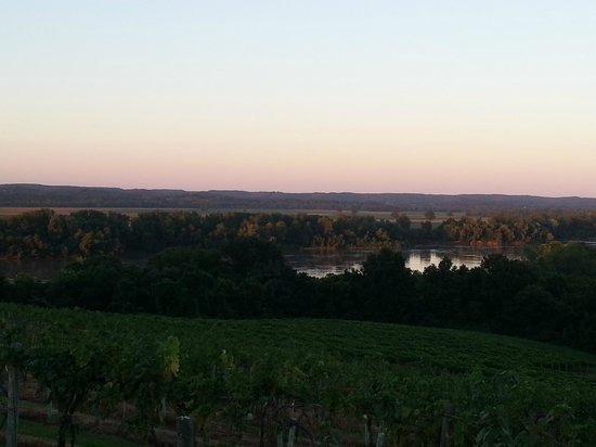 Oak Glenn Vineyard and Winery: amazing view of the missouri river