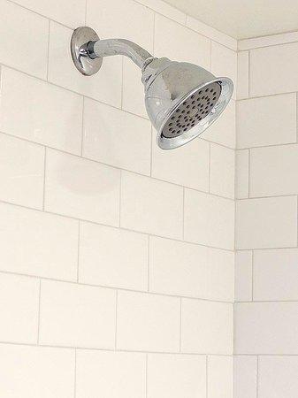Holladay House Bed and Breakfast: Garden Room: Rainshower shower head in bathroom