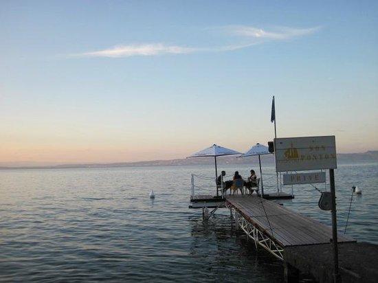 Hôtel de la plage : Blick auf den See