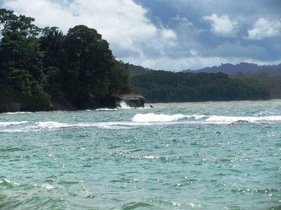 The Toucan Stay Inn : Punta Uva (Grape Point)