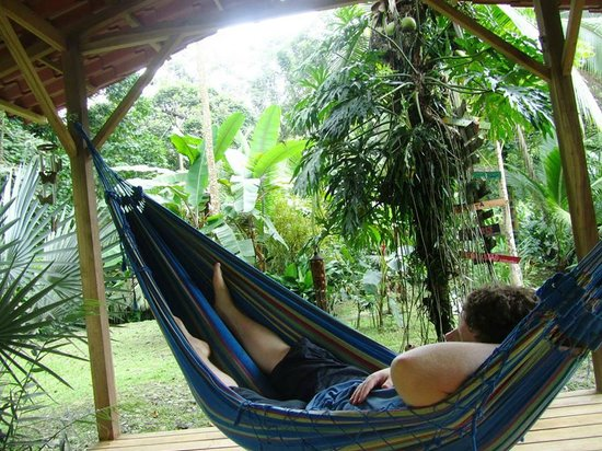 The Toucan Stay Inn : snoozing after adventurous day