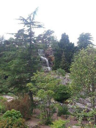 Horticultural Gardens (Tradgardsforeningen): jolie cascade dans le parc