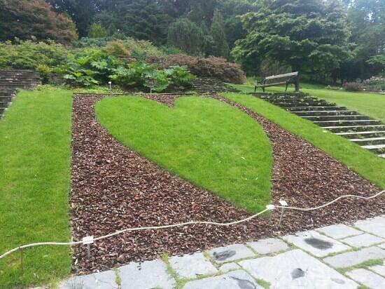 Horticultural Gardens (Tradgardsforeningen): le jardin