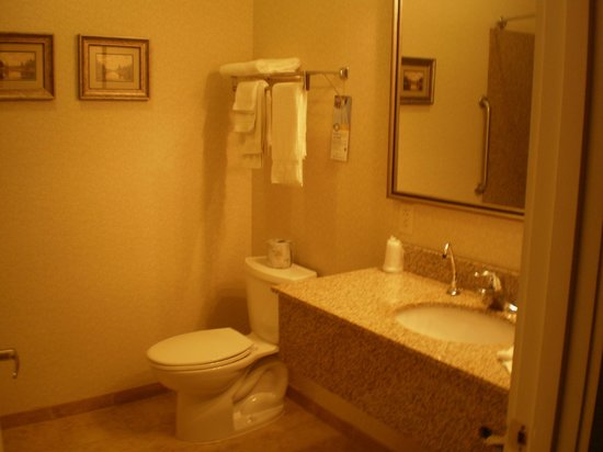 Quality Inn & Suites Maine Evergreen Hotel : Sink/Toilet