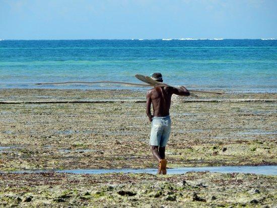 Kinondo Poa : Fischer bei Ebbe