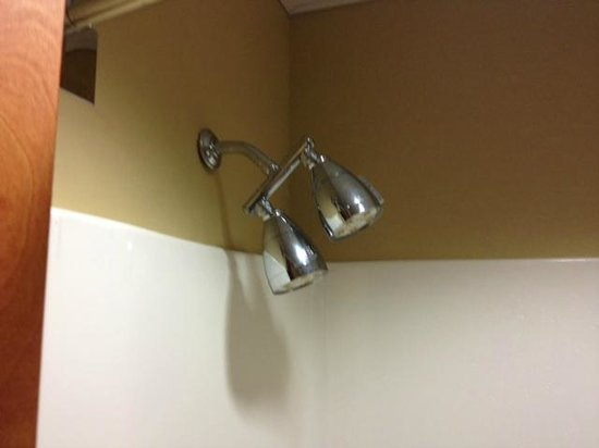 Vista Inn & Suites - Warner Robins : Here's picture of the double shower head