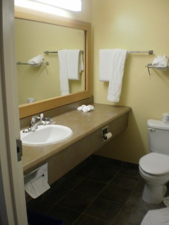 Best Western Plus Moncton : Sink and toilet