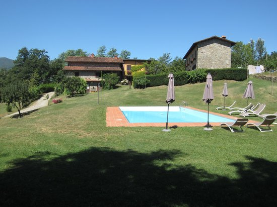 Agriturismo Braccicorti: Swimming Pool