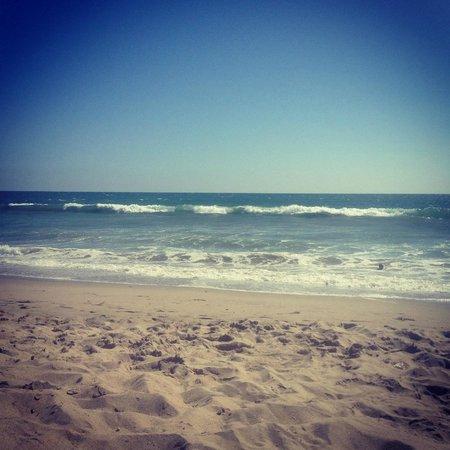 Hostelling International - Los Angeles/Santa Monica: Santa Monica Beach
