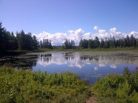 Wilderness State Park: On one of the hiking trails is Goose Pond