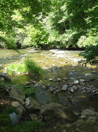 River Valley RV Park & Campground: river