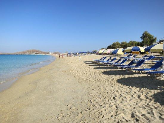 Hotel Francesca: Saint Prokopio's Beach