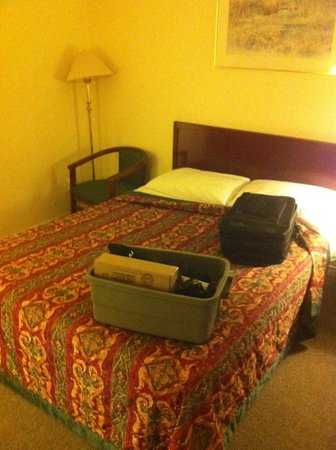 A-1 Motel: Queen bed and one chair...no table in the room