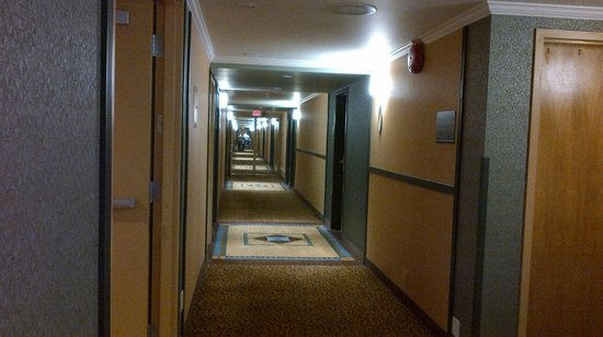 BEST WESTERN PLUS Langley Inn : Hallway