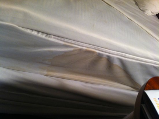 Vittoria Hotel and Suites: stain on mattress cover