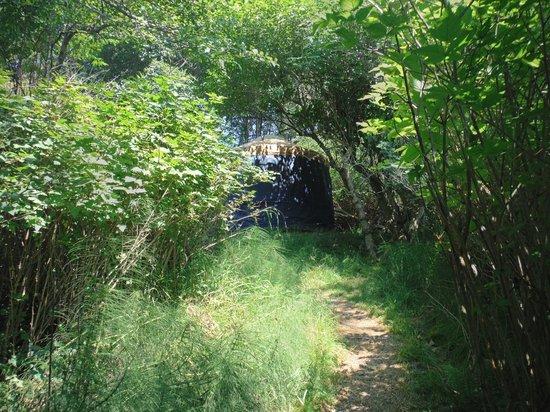 Doe Bay Resort and Retreat: Neptune Yurt