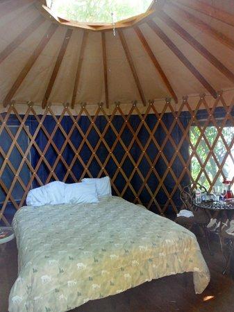 Doe Bay Resort and Retreat: Inside our yurt