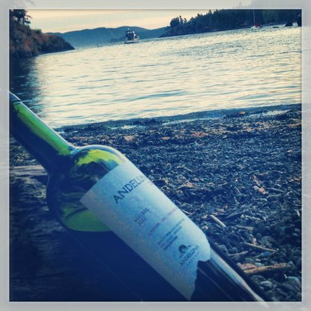 Doe Bay Resort and Retreat: Enjoying the sunset from Otter Cove with a little vino