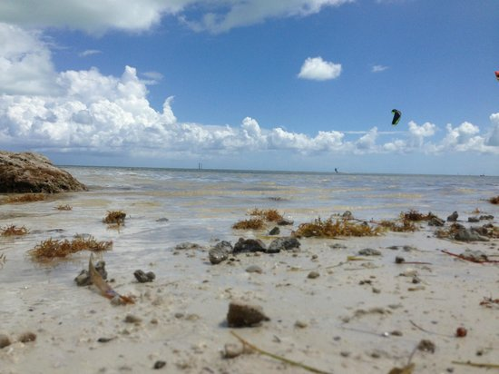A&M Rentals: Breath taking moment Key west