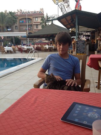 Club Dorado Hotel: My son with the resident cat
