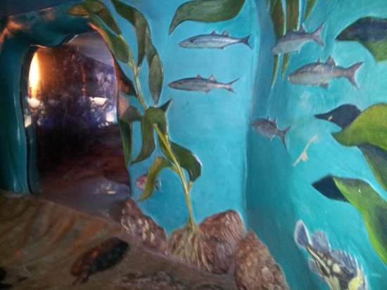 Bay Area Discovery Museum: Crawl through aquarium (small kids can walk in here)