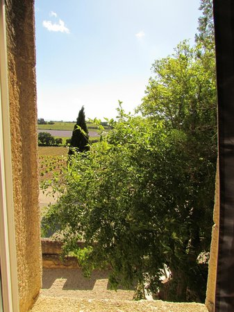 Hostellerie Chateau des Fines Roches : Vista da janela do quarto Classic Room, mais barato
