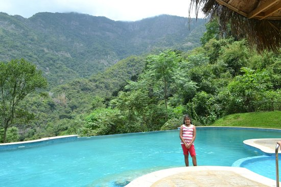 View from swimming pool picture of kurumba village - Best hotels in ooty with swimming pool ...