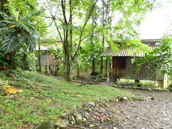 Selva Bananito Lodge: die einzelnen Cabines