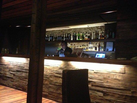 Foto de peumayen ancestral food santiago bar tripadvisor for Food at bar 38