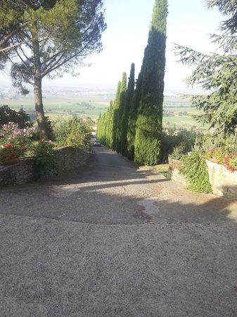 Agriturismo La Maesta: toegangsweg