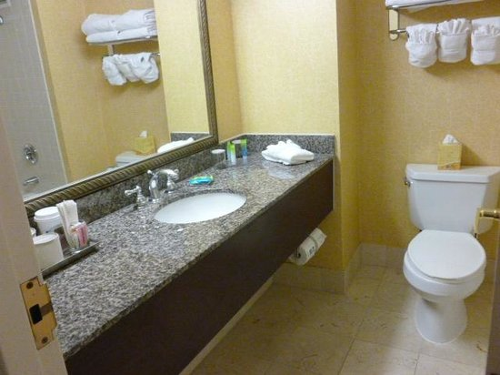 Radisson Hotel Seattle Airport: bathroom