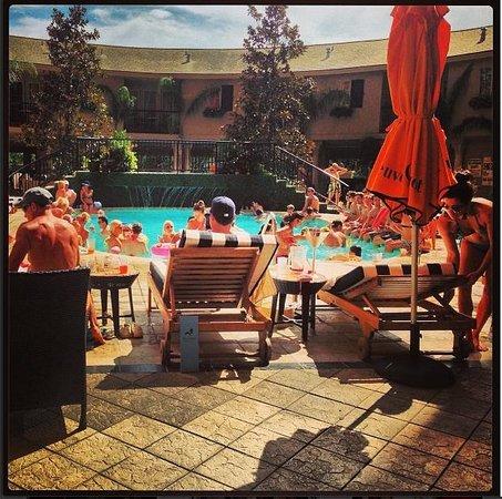 Hotel Zaza Houston Museum District Pool Insanity Wow
