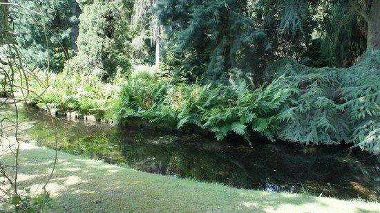 Arboretum Trompenburg: 1