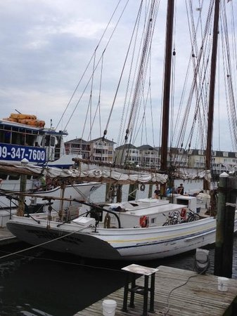 Atlantic City Cruises: AJ Meerwalt Cruise A/C