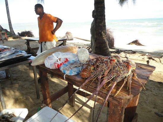 a côte de chez pacomer vente de produits de la mer