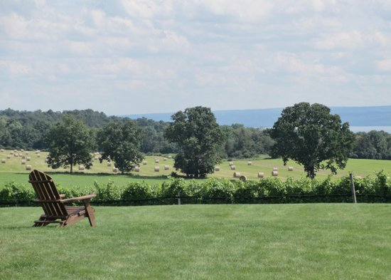 Water to Wine Day Tours : View from Long Point Winery