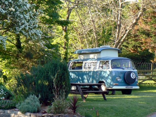 Tehidy Holiday Park: Camping and Touring