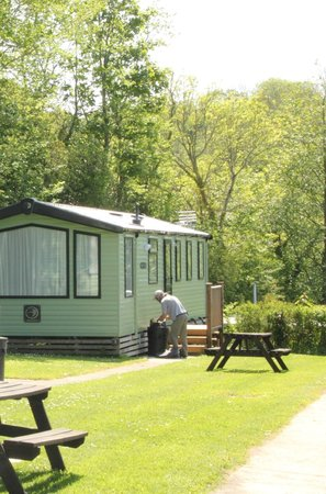 Tehidy Holiday Park: Holiday Caravans
