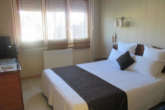 Inter-Hotel Albi le Cantepau : Chambre