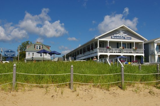 Sandpiper Beachfront Motel: sandpiper